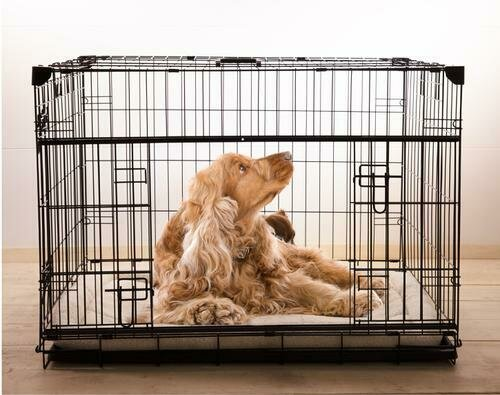 Lucky Dog 2-Door Dog Crate With Pad