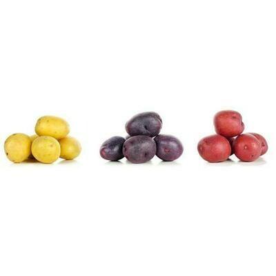 Mini Colored Potatoe 680 g / 1.5 lb