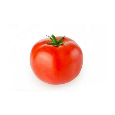 Hydroponic Sabra Tomato, 1.6 kg / 3.5 lb