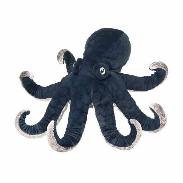 Winky Octopus