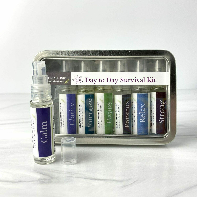 Day to Day Survival Kit Tin