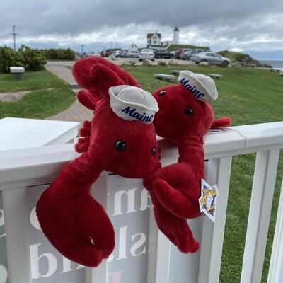 Sailor Lobster-Ahoy!