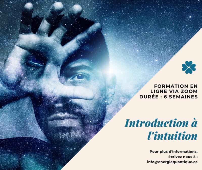 Introduction à l'intuition (6 semaines de formation en ligne sur Zoom)