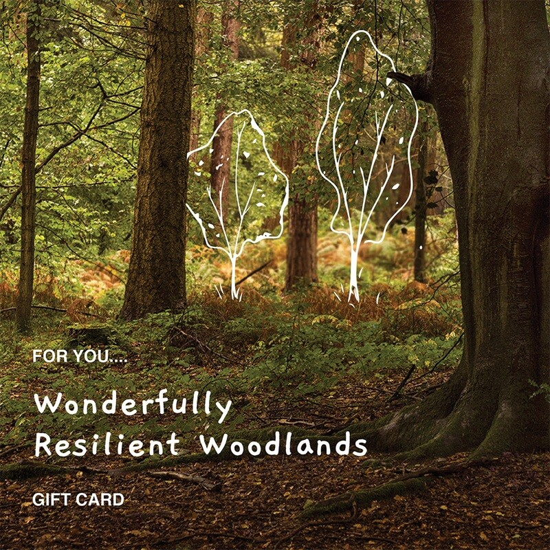 Wonderfully Resilient Woodlands £25 - £100