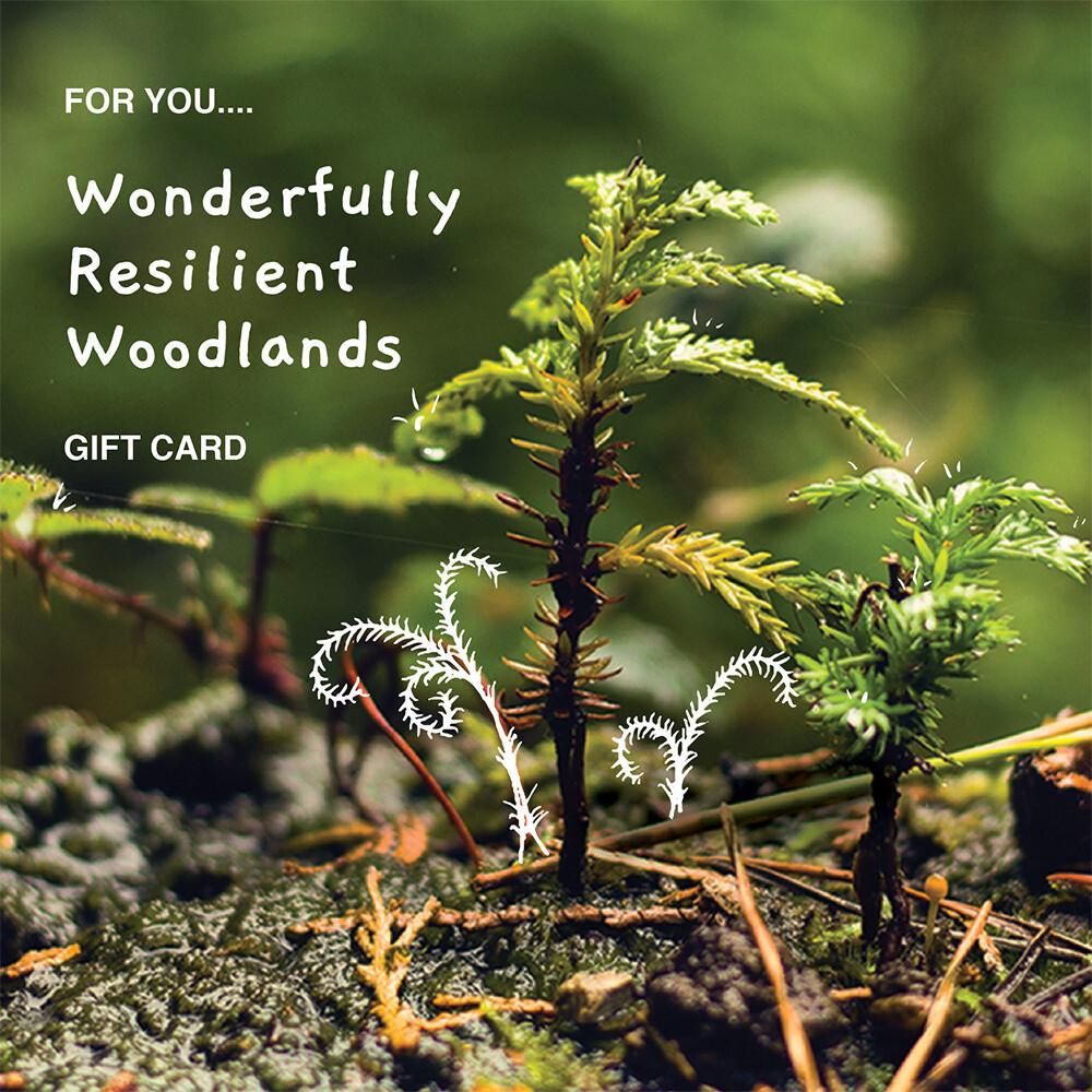 Wonderfully Resilient Woodlands £25 - £100