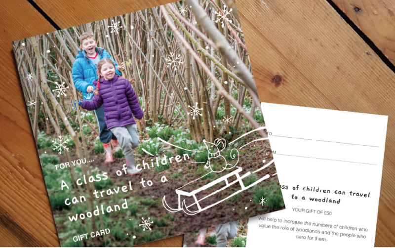Christmas - Travel to a Woodland