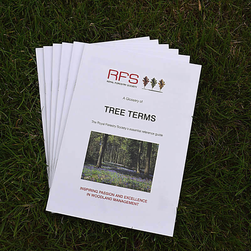 RFS - Tree Terms (2019 Edition)