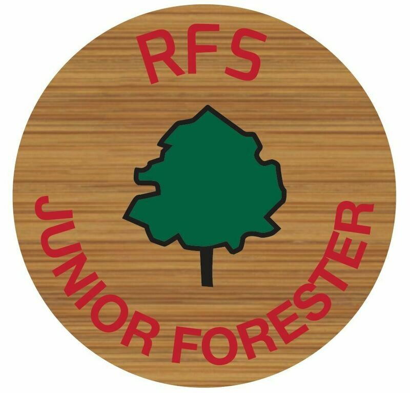 Junior Forester Pin Badge