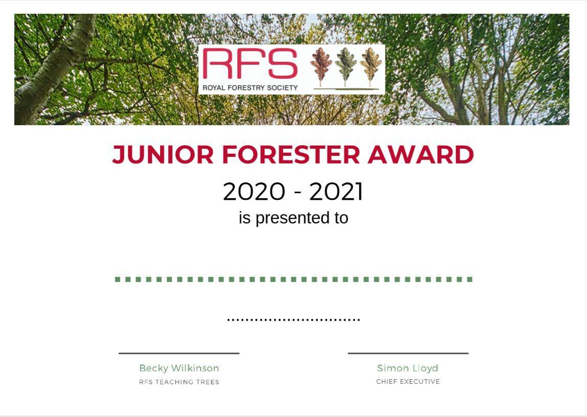 Junior Forester Award Certificate