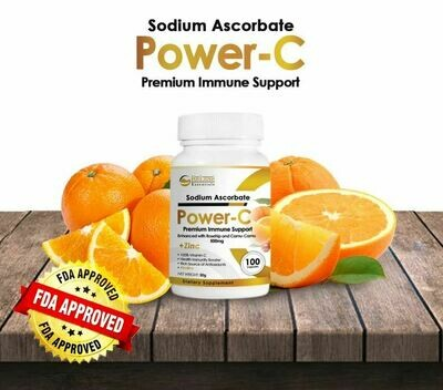 PREMIUM POWER C VITAMIN C with ZINC 500MG (100 CAPSULES/BOTTLE)