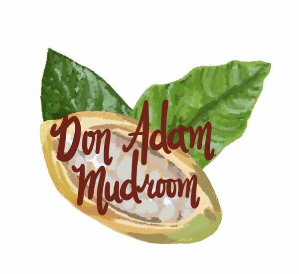 Don Adam Mudroom