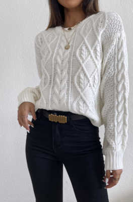 Sweater Palmier
