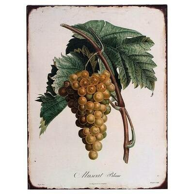 Vintage Botanical Grape Tin Sign