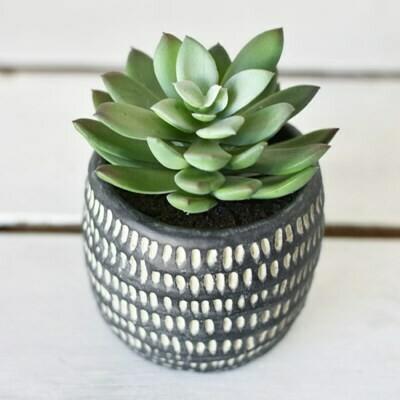 Black Succulent Pot
