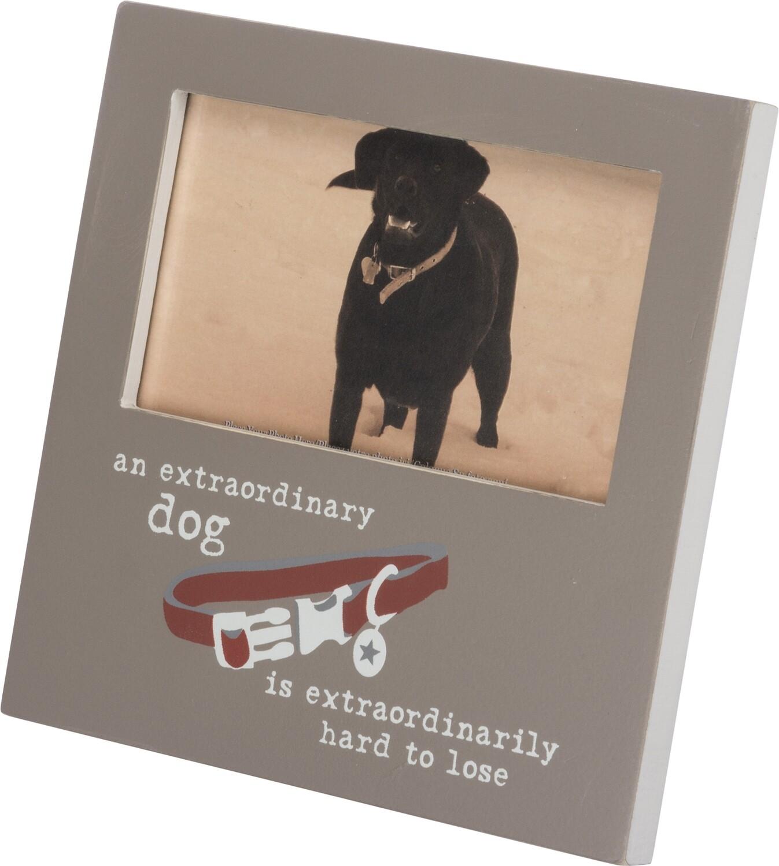 Extraordinary Dog Frame
