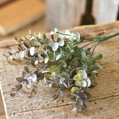 Purple Eucalyptus Pick