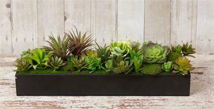 Succulent Garden Planter Box