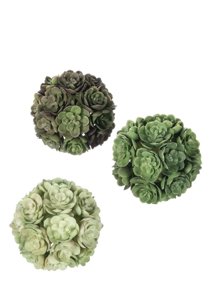 Set of 3 Echeveria Orbs