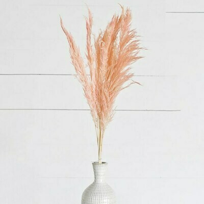 Pink Pampas Stem Bundle