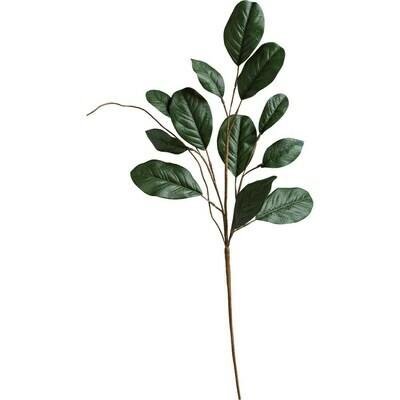 Magnolia Leaves Pick