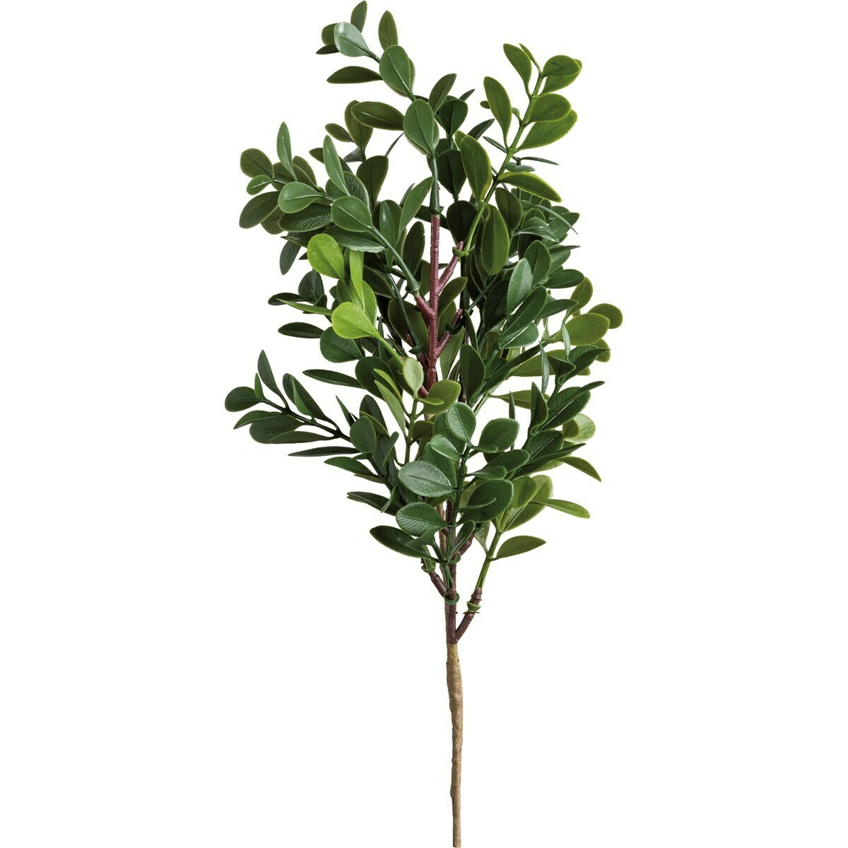 Boxwood Pick