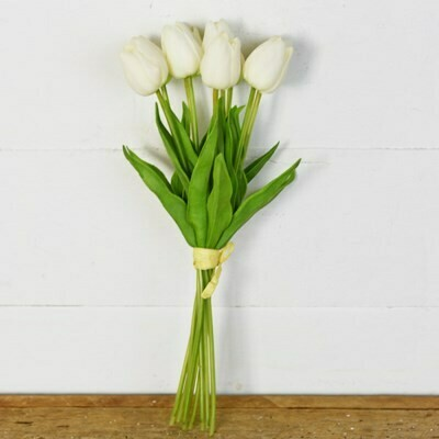 White Tulip Bunch