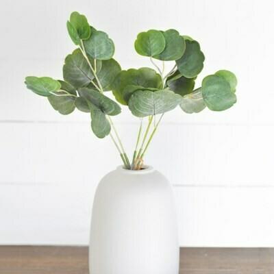 """Eucalyptus Bundle, 17"""""""