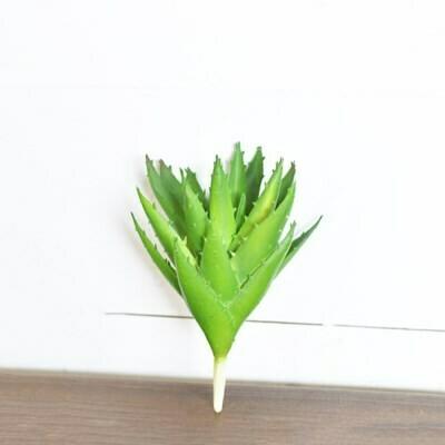 Soft Aloe Pick