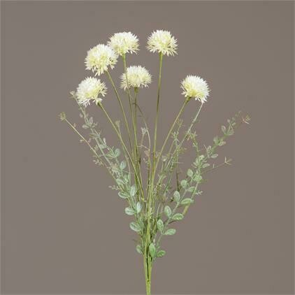 Cream Allium Pick