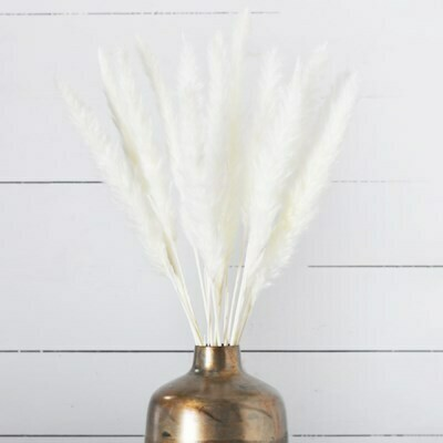 White Pampas Bundle