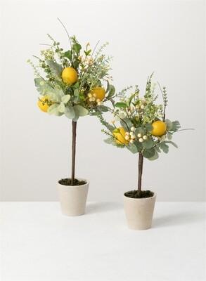 Lg Lemon Herb Topiary