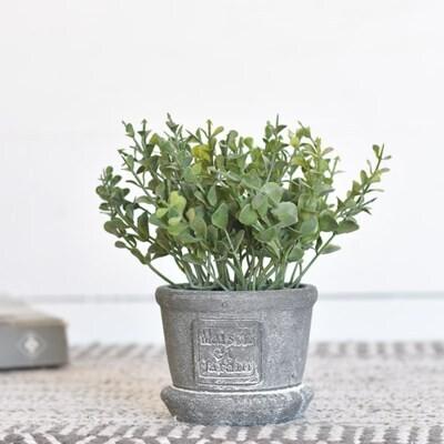 Greenery In Gray Pot