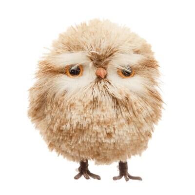 Fall Owl