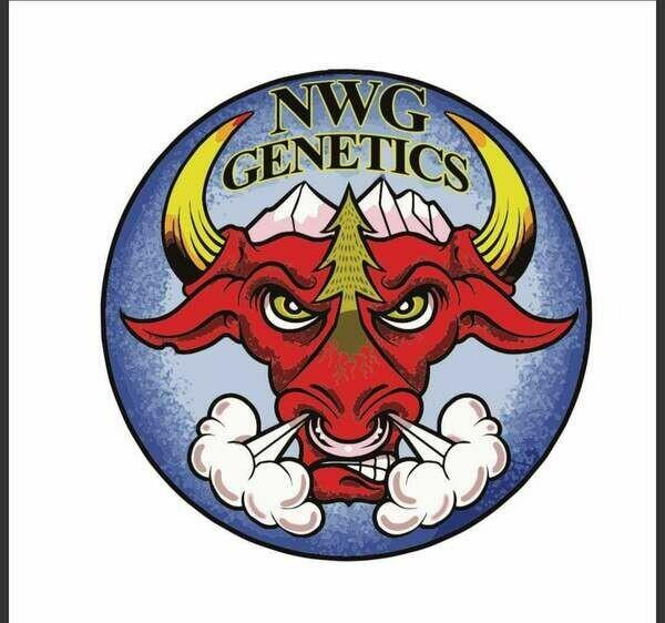 NWG Genetics