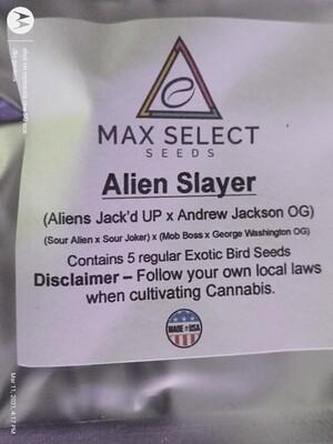 ALIEN SLAYER 👽☠️