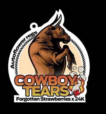 Cowboy 🤠 tears 😭 AUTO REGS