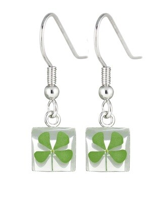Four-Leaf Clover, Square Hanging Earrings, White Background.