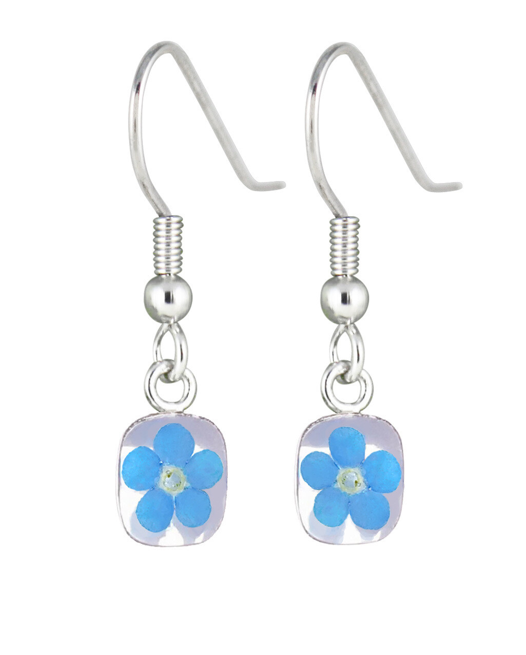 Real Forget-Me-Not Mini Square Earrings, White Background