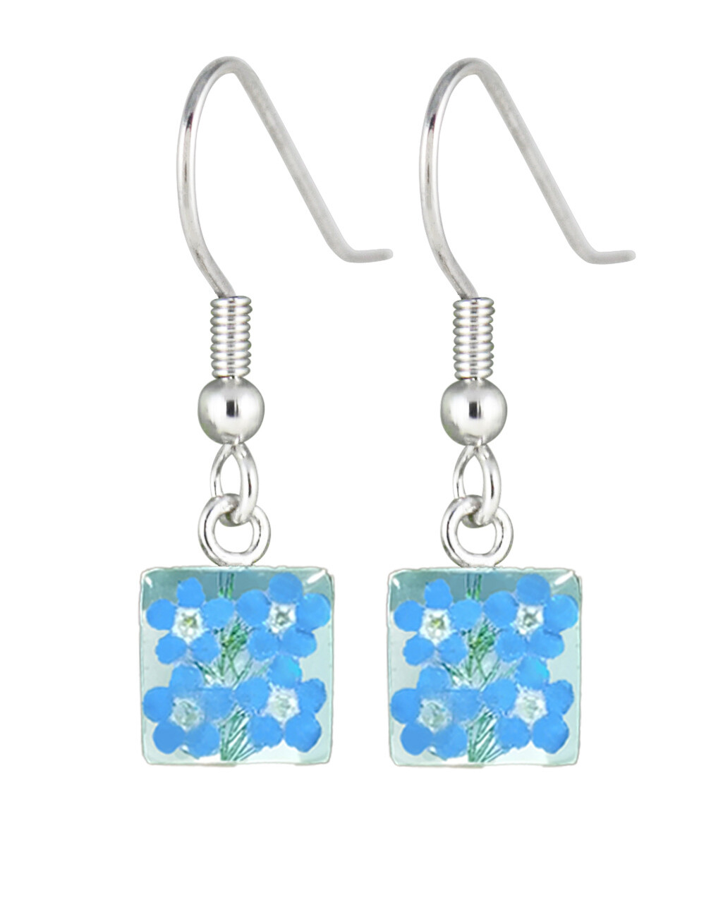 Real Forget-Me-Not, Small Square Earrings, White Background