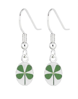 Four-Leaf Clover, Oval Hanging Earrings, White Background