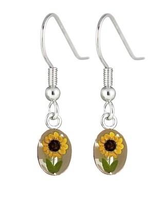 Sunflower, Oval Hanging Earrings, White Background.
