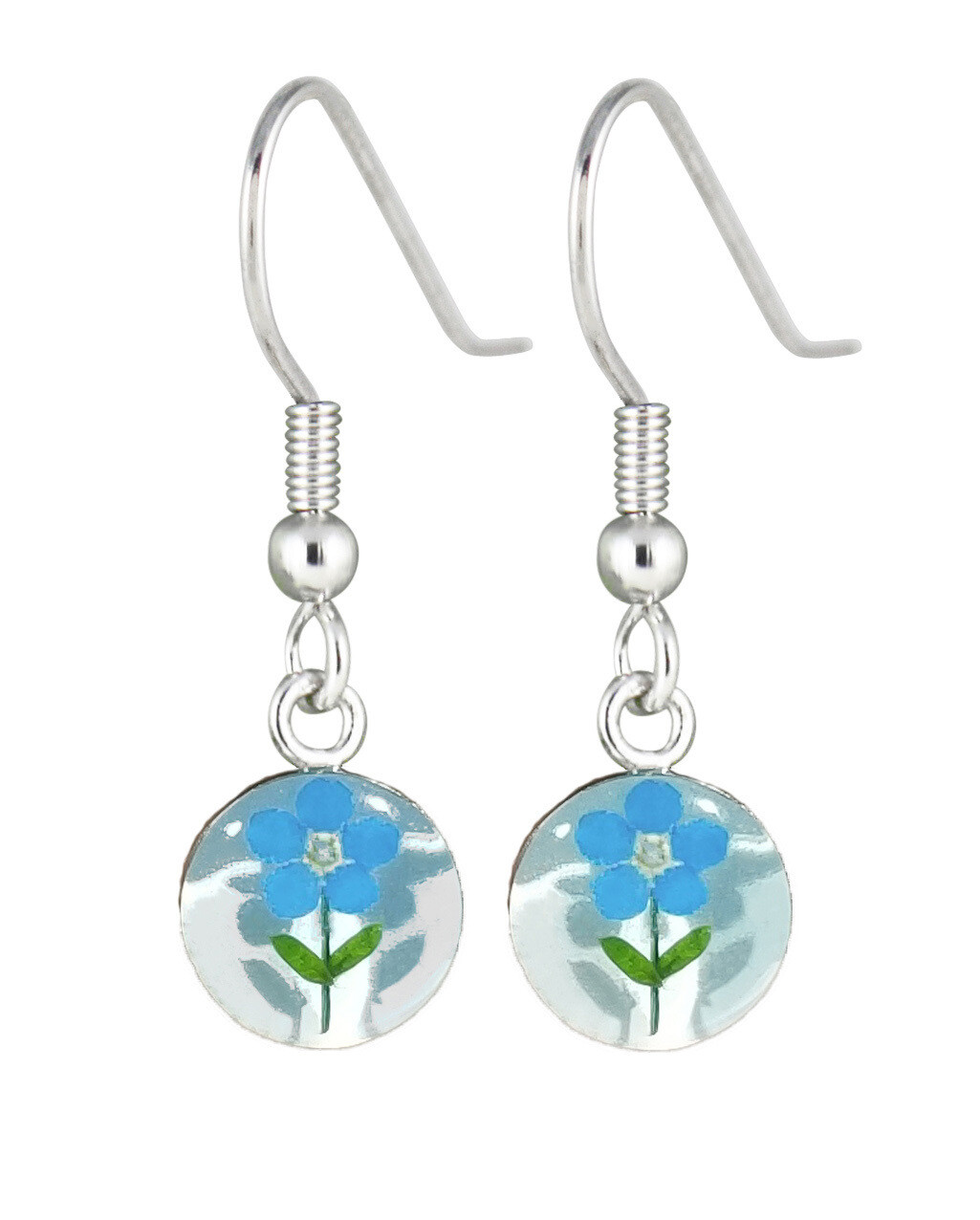 Real Forget-Me-Not Small, Circle Earrings, White Background