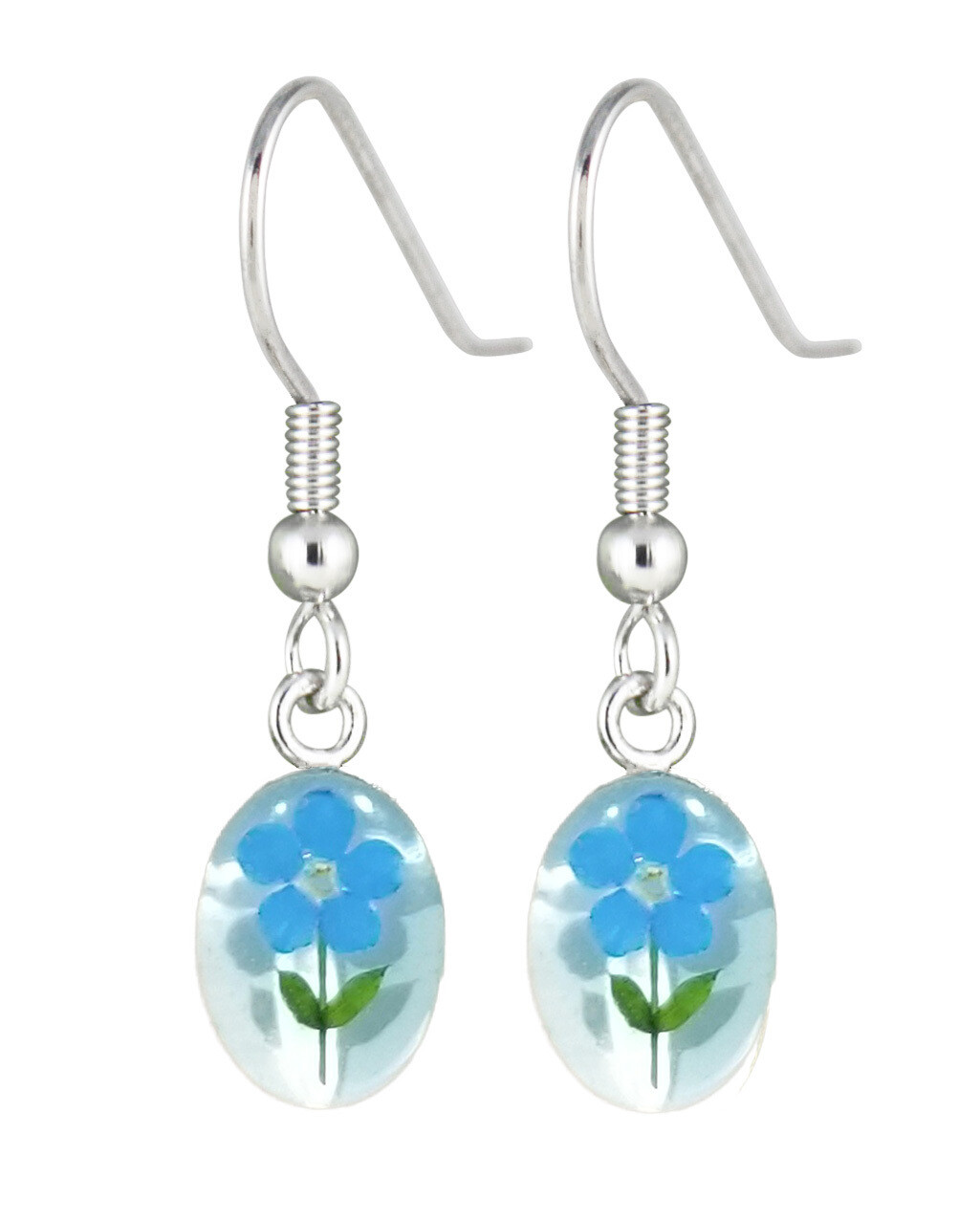 Real Forget-Me-Not, Oval Earrings, White Background.