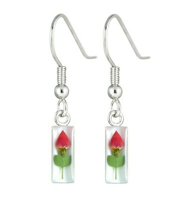 Rose, Small Rectangle Hanging Earrings, White Background.