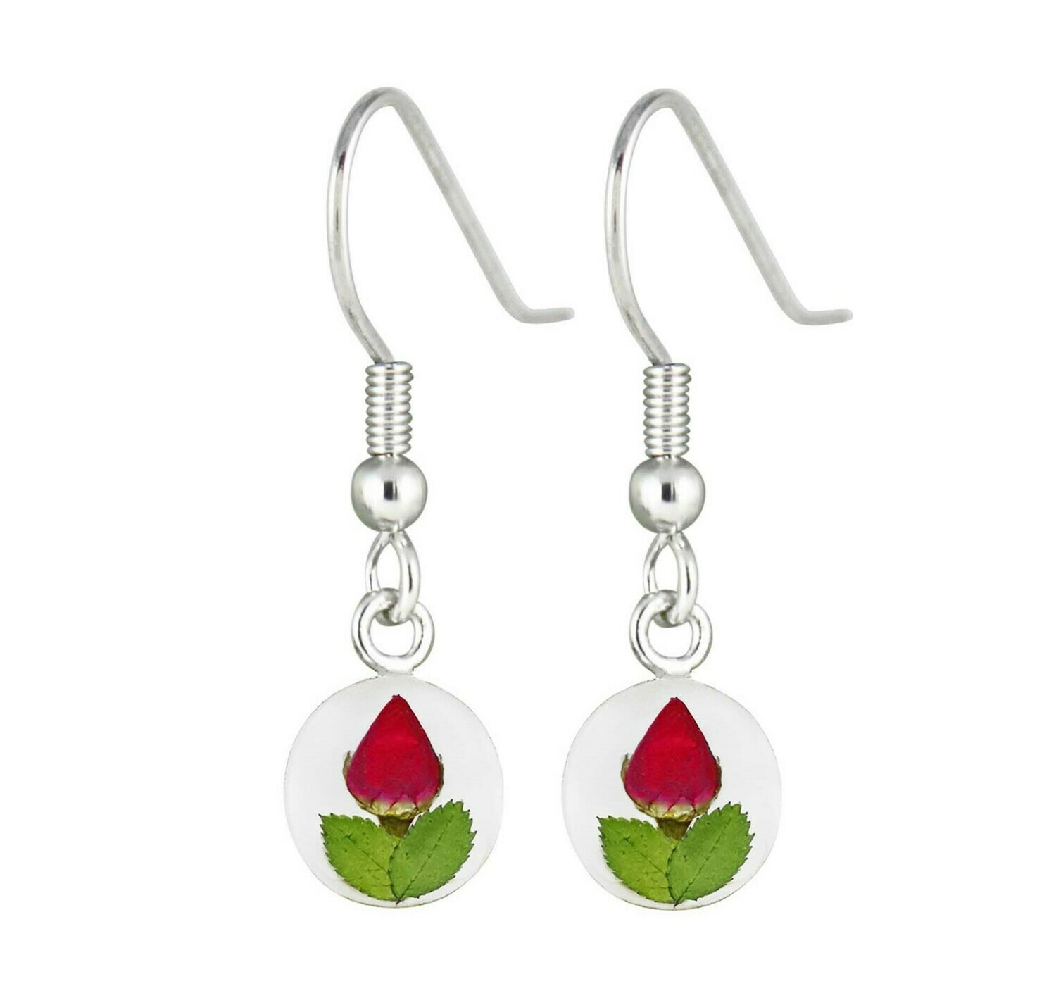 Real Rose Circle Earrings, Transparent Background.