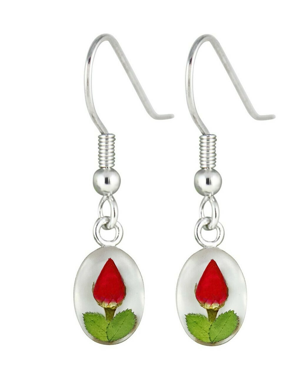Rose, Small Oval Hanging Earrings, White Background.