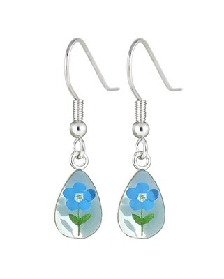 Real Forget-Me-Not, Teardrop Earrings, White Background