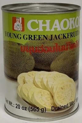 Thai Pro/Chaokoh - Jackfruit Young Green in Brine (20oz)