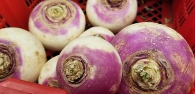 Turnip 1lb