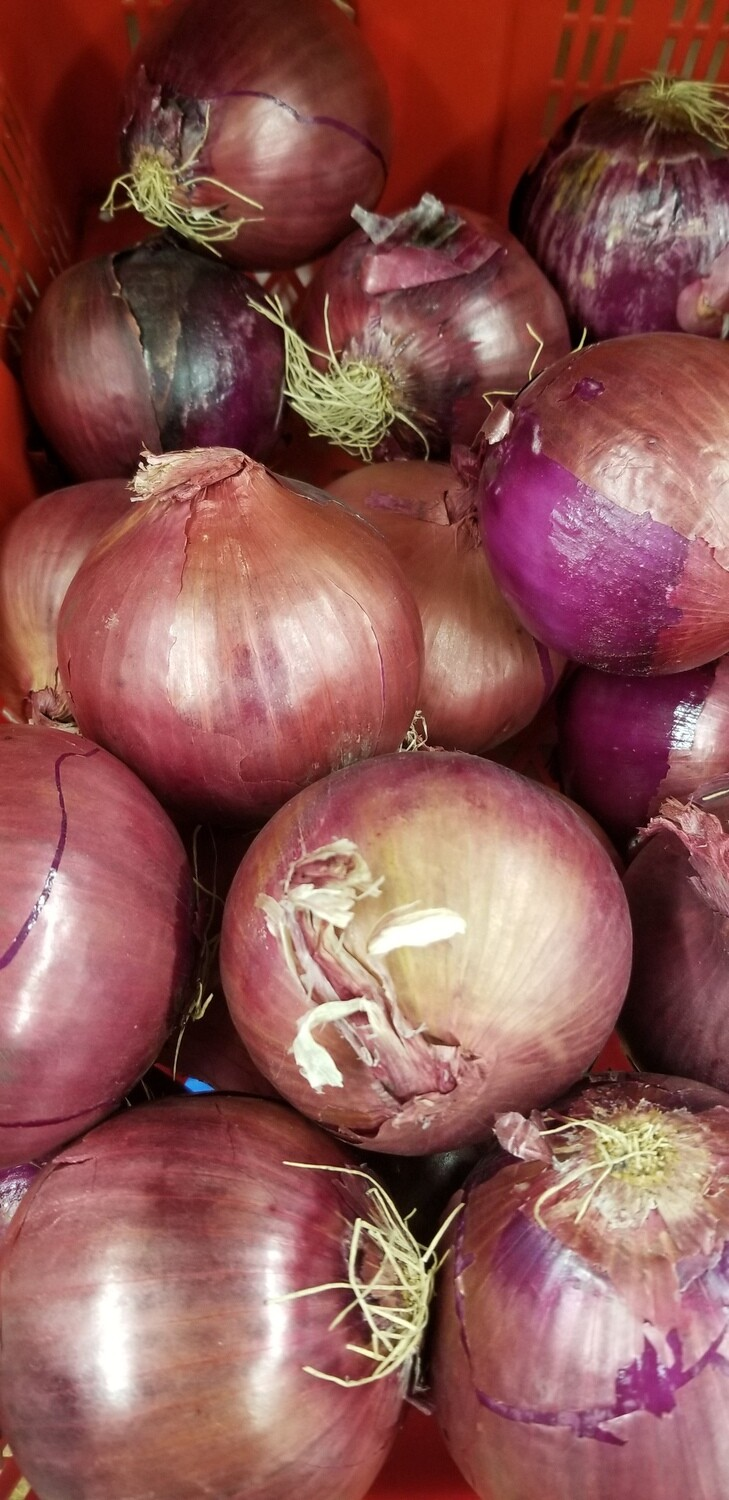 Red Onion 1lb